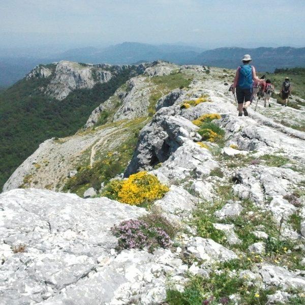 crêtes de la Sainte-Baume
