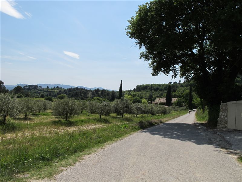 Route de retour vers le chateau de Cadenet