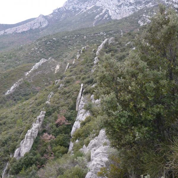 Arêtes rocheuses vers Baudino