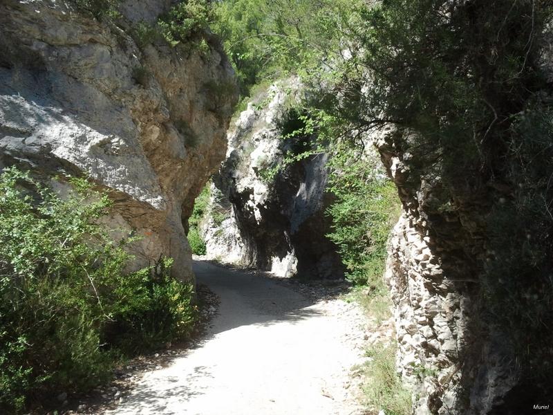 Passage dans l'étroit vallon du Gour