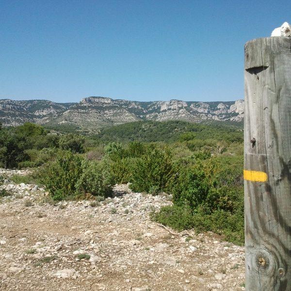 Plateau crau de Mayorques Luberon