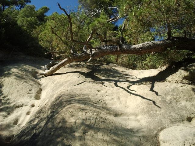 Etang de la Bonde rocher