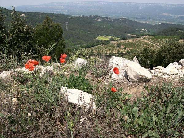 Depuis les crêtes, vue sur le versant sud du Luberon