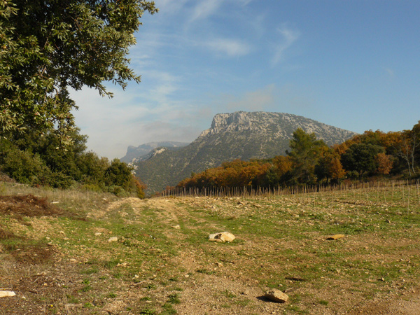 Le mont Olympe au loin.