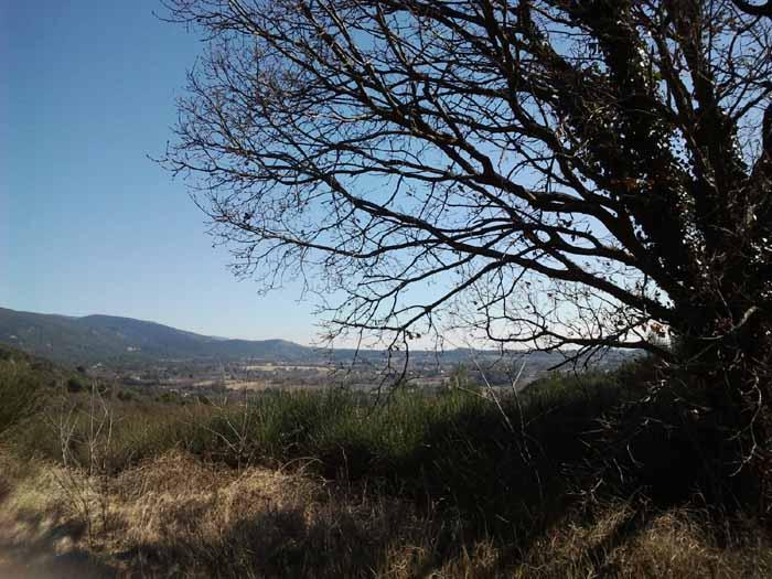 Vue sur la  campagne de Lourmarin