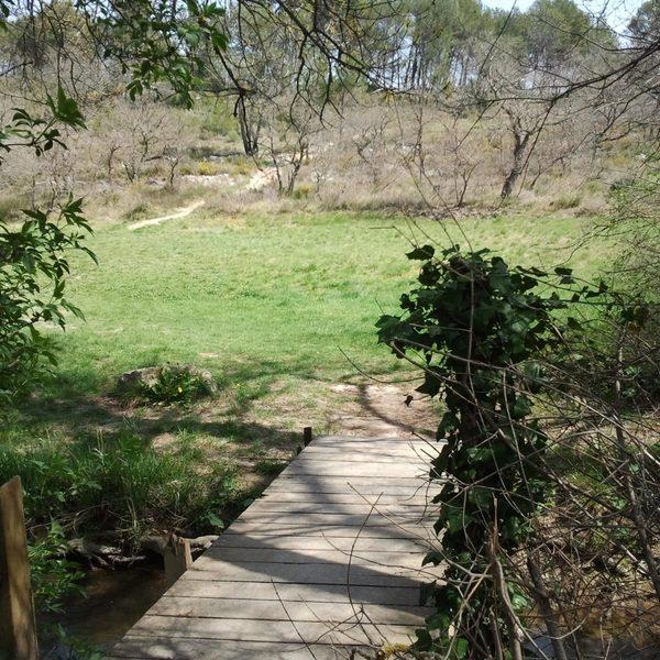 L'un des quelques ponts qui enjambent le cours d'eau