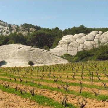 Le massif du Gros Cerveau et les falaises de grès de Sainte-Anne-d'Evenos