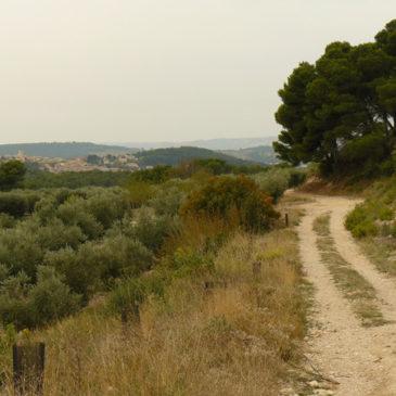 Velaux, balade en boucle au Val des Vignes