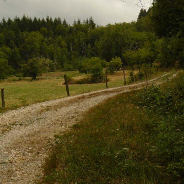 Vers le GR et la Maisonneuve