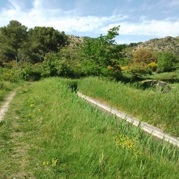 Canal de Pélissanne et en arrière plan le massif des Costes