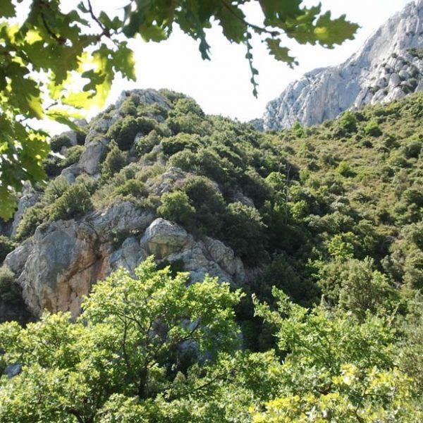 Sentier tracé marron vers le refuge Baudino