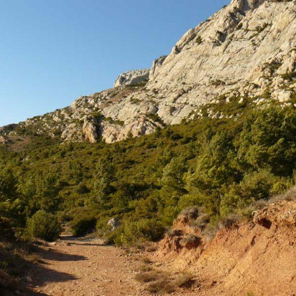 Sentier du retour en contrebas des falaises