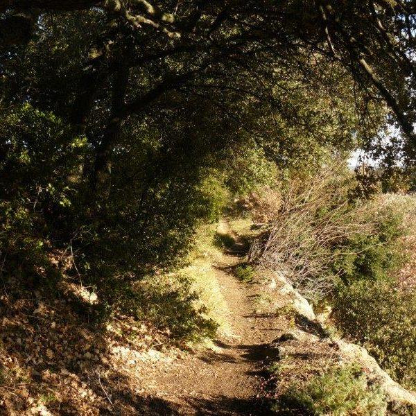 vaugines cucuron sentier de randonnée