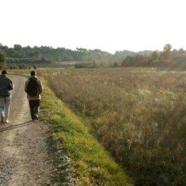 Petite route de retour à Saint-Cannat, du côté des fumades