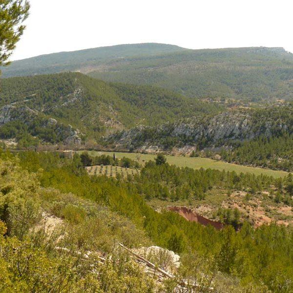 sainte-victoire vue sur Roque Haute
