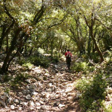 Itinéraire dans le Luberon ouest : les combes du Colombier et de Vidauque