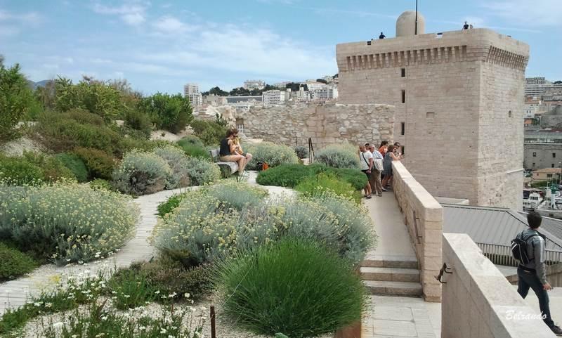 e Jardin des Migrations massif de fleurs fort saint jean