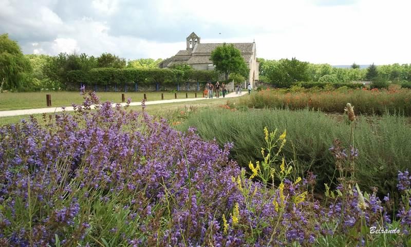 Jardin remarquable de Salagon