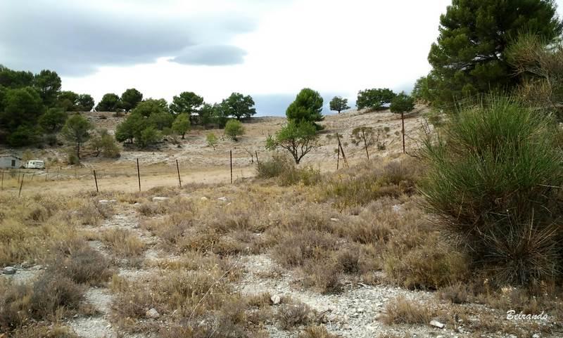 Passage près de la bergerie
