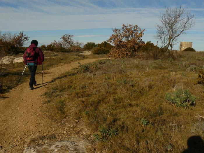 Balade à Vernègues : le Puech et la plaine du Petit Sonnailler