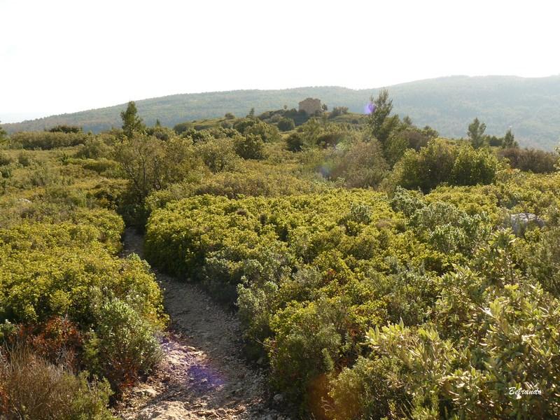 Plateau de l'oppidum d'Untinos