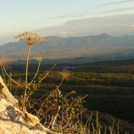 Les Monts Auréliens depuis la Marbrière