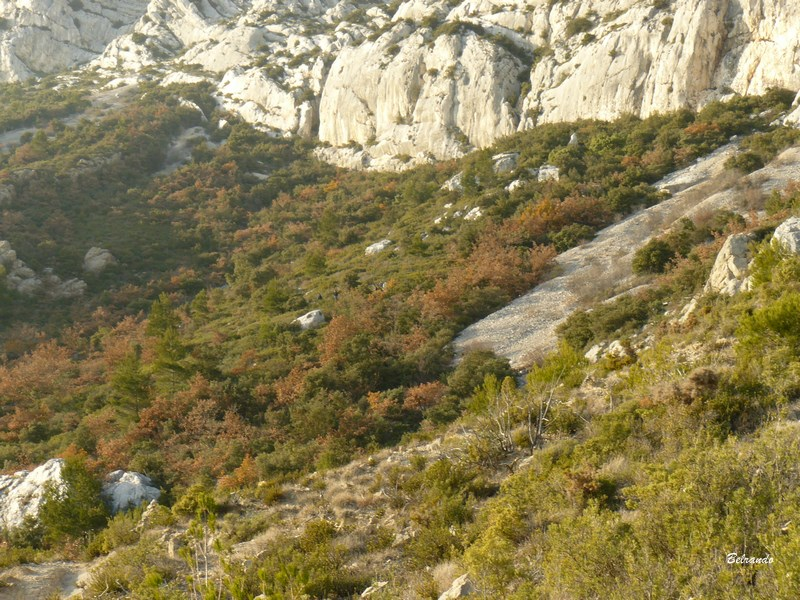 falaises sainte-victoire-saint-ser