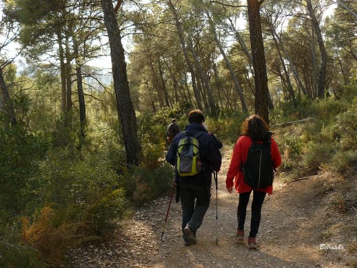 Sentier de retour vers le moulin de Cézanne (tracé jaune)