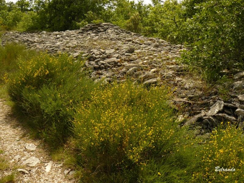 Un clapier (clapas) ou amas de pierres sur le plateau des Claparèdes