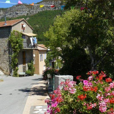 saint-julien-du-verdon rue et fleur géranium
