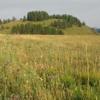 Prairie de Valberg