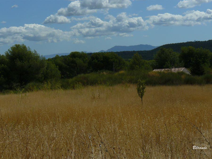 Vue sur le Puech du massif de l'Etoile depuis la route d'Eyriès.