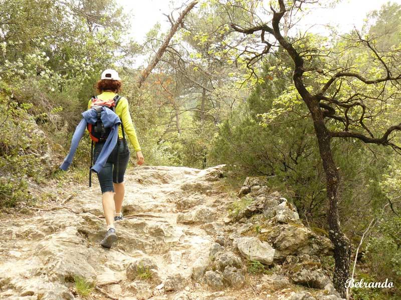 Sentier rocheux en direction des rives de l'Huveaune