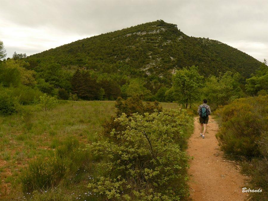 Sentier menant au vallon de Mantelette