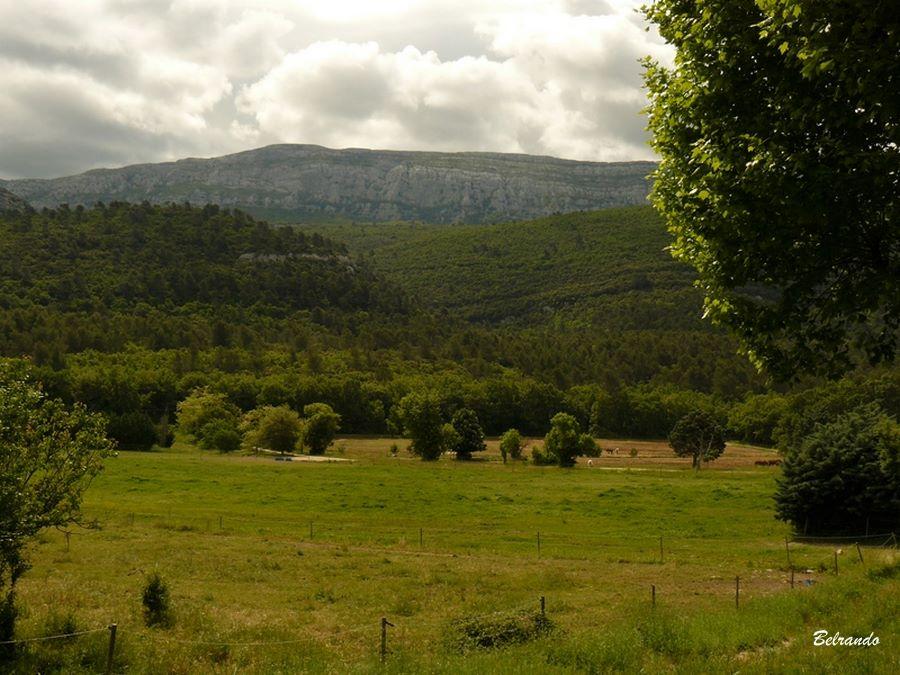 Vue sur les falaises surplombant les sources de l'Huveaune la grotte de Castelette