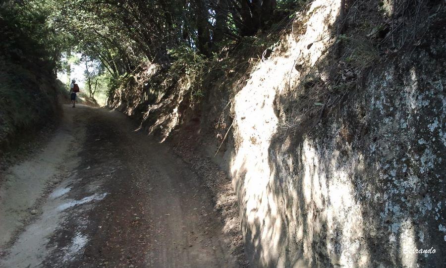 sentier pédestre vers vaugines