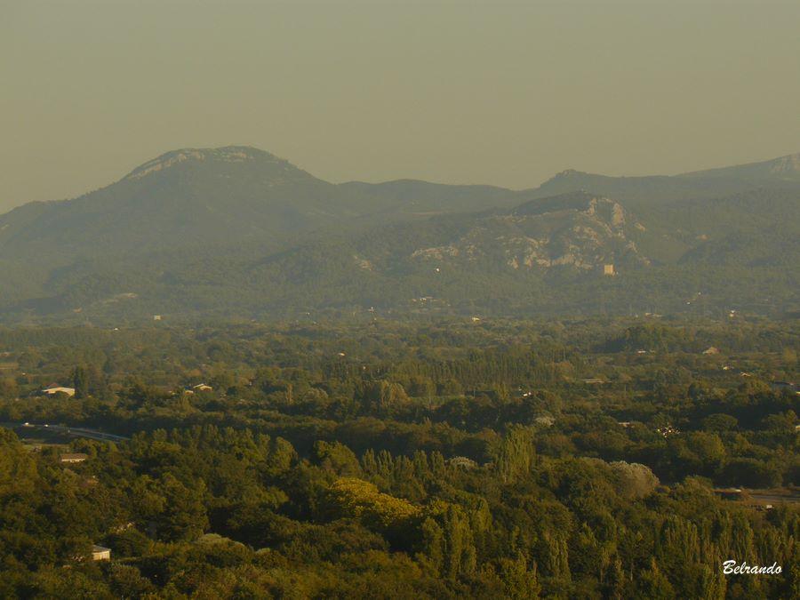 Au loin le massif surplombant Meyrargues et le Concors à gauche.