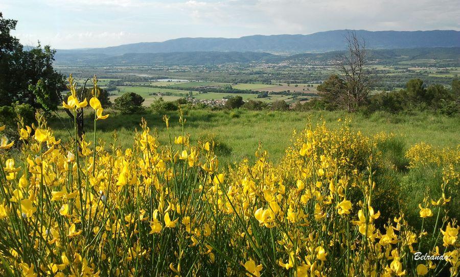 Vue sur la plaine de Durance et le Luberon.