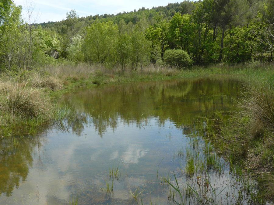 L'étang de la sainte-Victoire et sa cabane