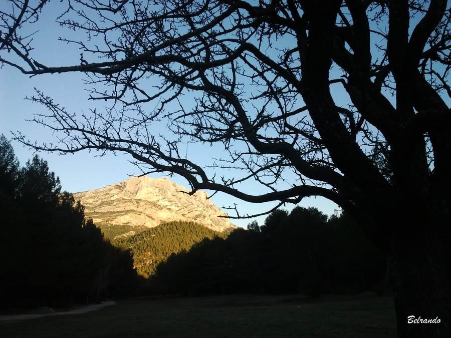 Sainte-Victoire depuis prairie de Roques-Hautes