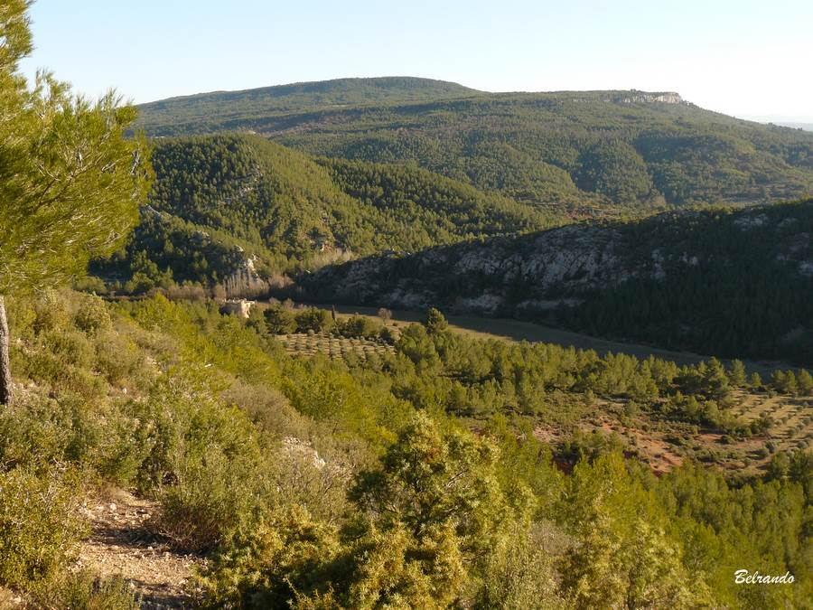 Vue sur une partie de la réserve naturelle de Roques-Hautes.