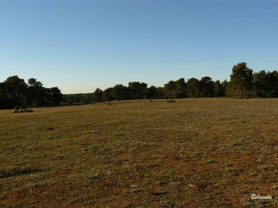 espace herbeux de sainte victoire près de bimont