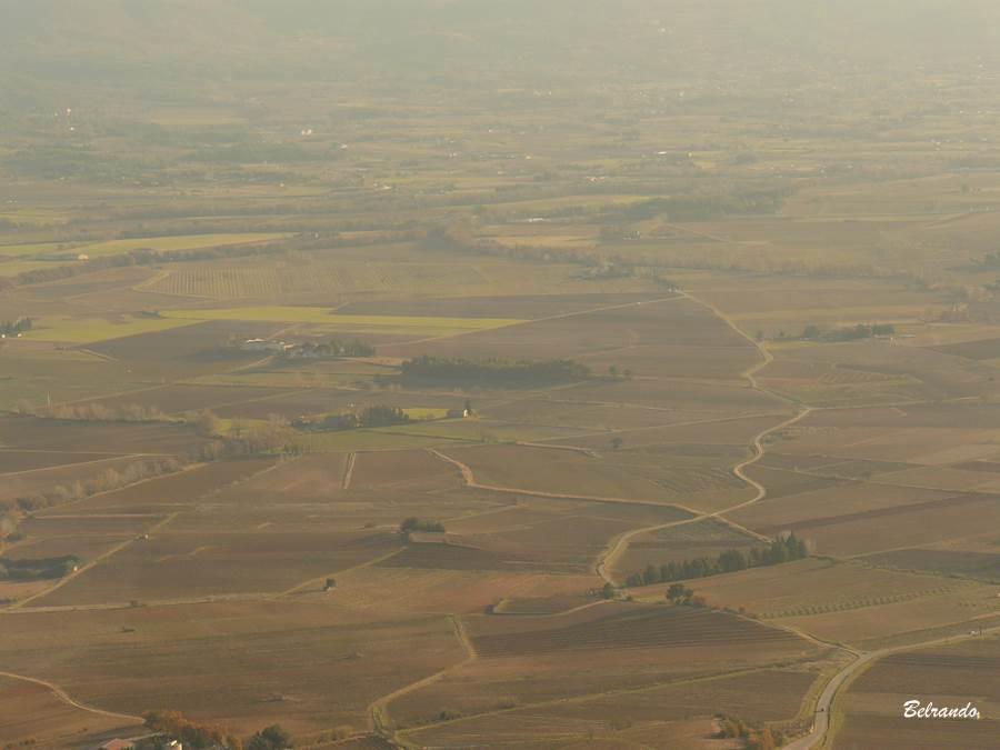 Plaine de Puyloubier, ses champs et sa route qui trace un profil