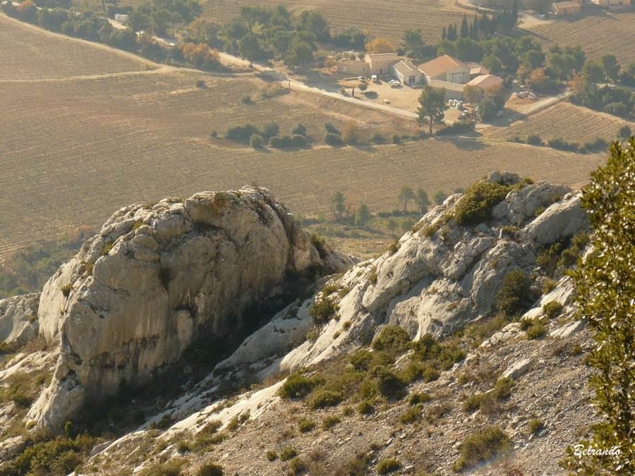 Vue sur la plaine de Puyloubier et ses vignobles.