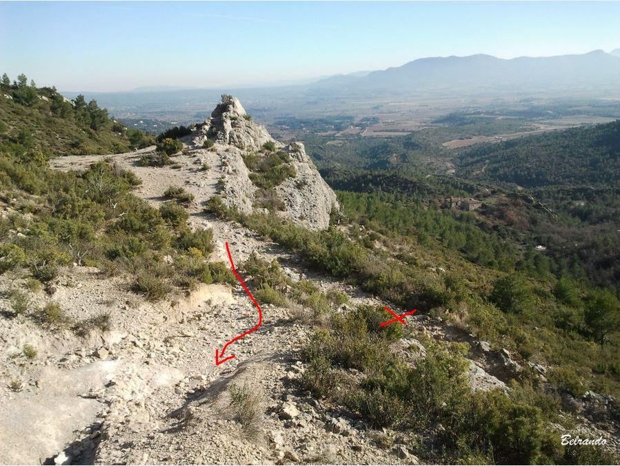 Le tertre et au fond une partie des Monts Auréliens