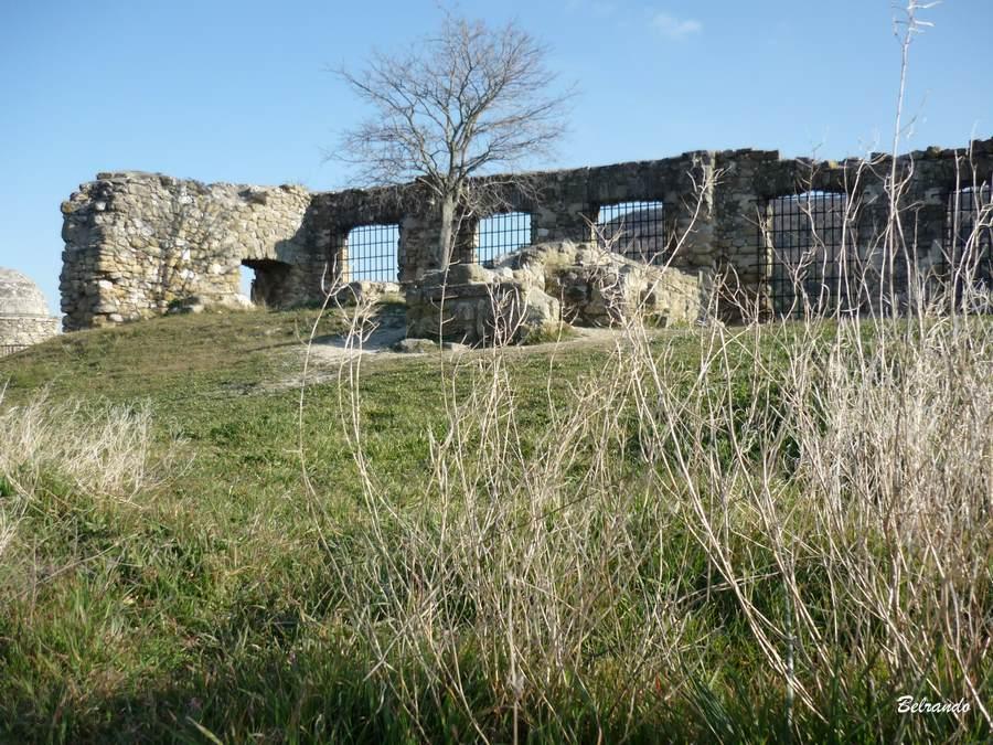 Vestiges du château dominant Alleins