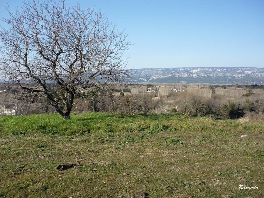 Depuis l'aire du Moulin à vent, vue sur le Petit Luberon