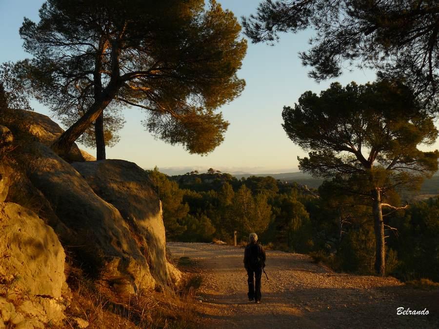rochers et Piste en direction de la marbrière de Roques-Hautes