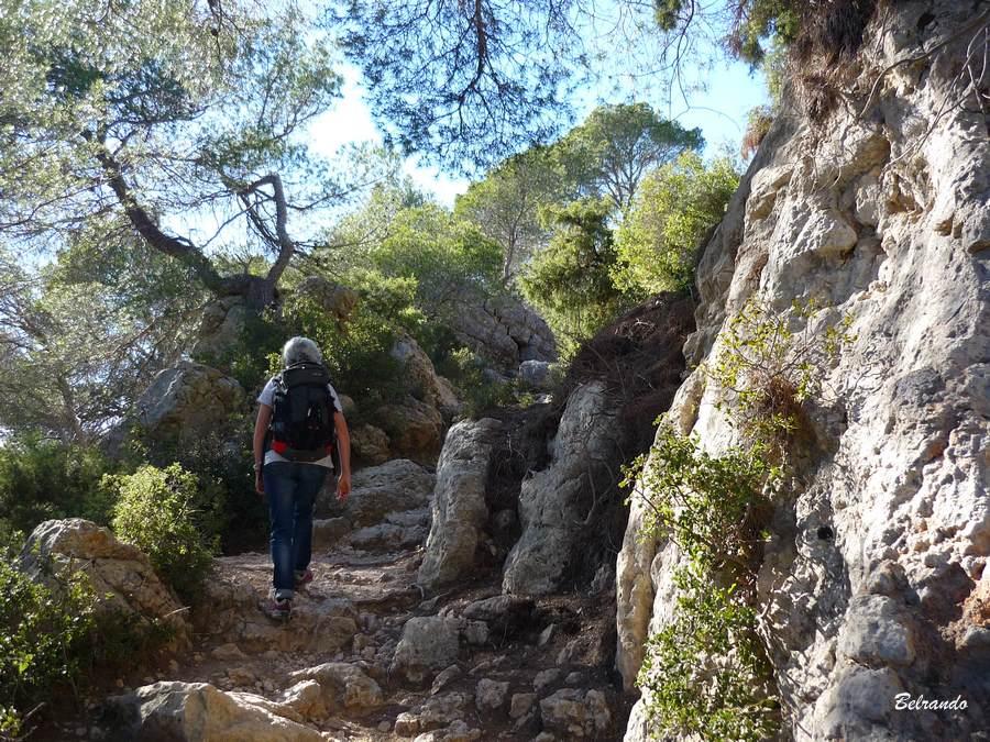 Le sentier au dessus du Tholonet