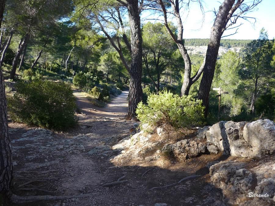 Le sentier débuche sur la piste menant au barrage Zola